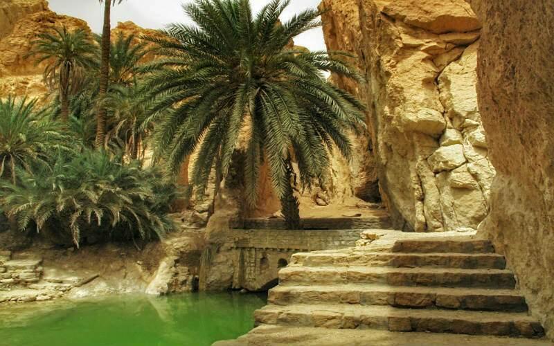 oasis-de-chebika